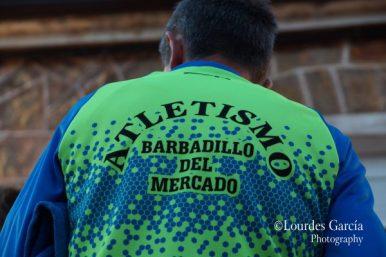 BARBADILLO (1478)